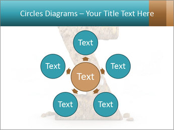 0000063023 PowerPoint Templates - Slide 78