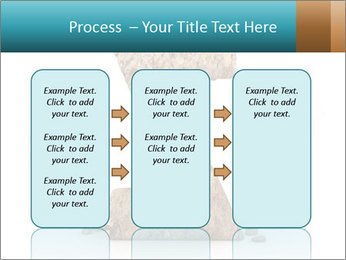 0000063023 PowerPoint Templates - Slide 86