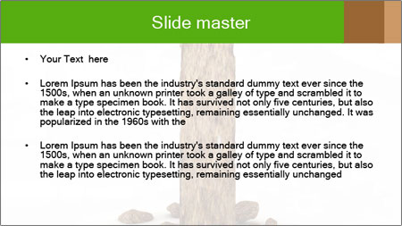 0000063024 PowerPoint Template - Slide 2