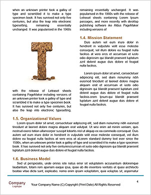 0000063025 Word Template - Page 4