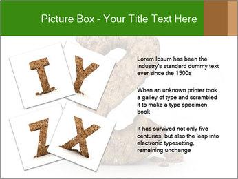 0000063032 PowerPoint Templates - Slide 23