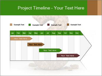 0000063032 PowerPoint Templates - Slide 25