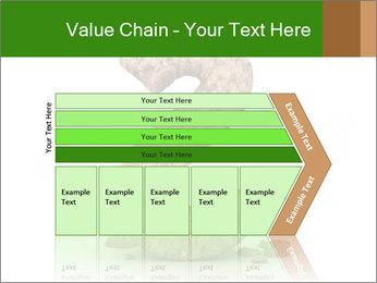 0000063032 PowerPoint Templates - Slide 27
