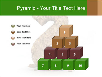 0000063032 PowerPoint Templates - Slide 31