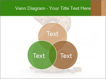0000063032 PowerPoint Templates - Slide 33