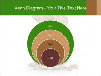 0000063032 PowerPoint Templates - Slide 34