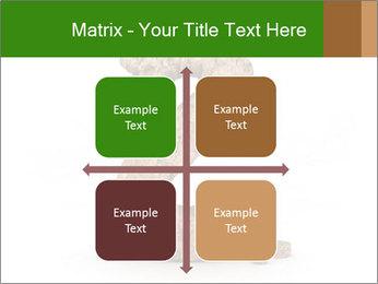 0000063032 PowerPoint Templates - Slide 37