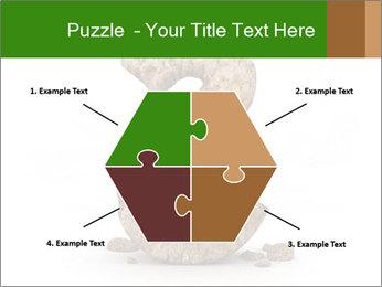 0000063032 PowerPoint Templates - Slide 40