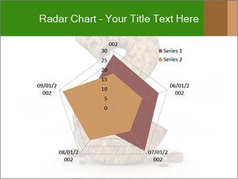 0000063032 PowerPoint Templates - Slide 51
