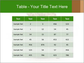 0000063032 PowerPoint Templates - Slide 55