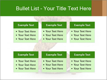 0000063032 PowerPoint Templates - Slide 56