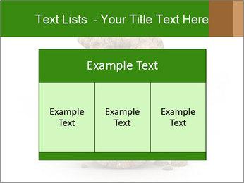 0000063032 PowerPoint Templates - Slide 59