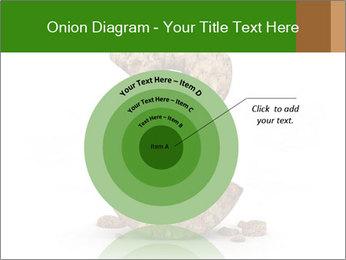 0000063032 PowerPoint Templates - Slide 61