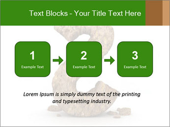 0000063032 PowerPoint Templates - Slide 71