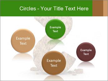 0000063032 PowerPoint Templates - Slide 77