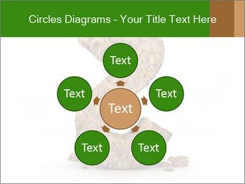 0000063032 PowerPoint Templates - Slide 78
