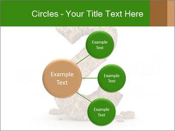 0000063032 PowerPoint Templates - Slide 79