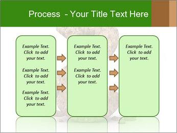 0000063032 PowerPoint Templates - Slide 86