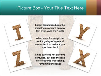 0000063034 PowerPoint Template - Slide 24