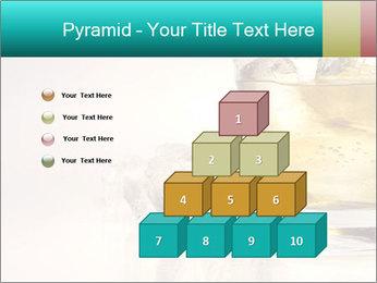 0000063035 PowerPoint Template - Slide 31
