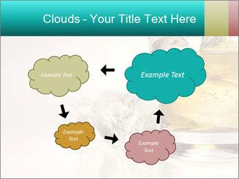 0000063035 PowerPoint Template - Slide 72