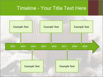 0000063042 PowerPoint Templates - Slide 28