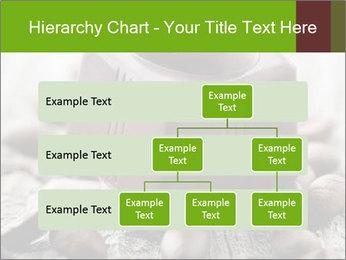 0000063042 PowerPoint Templates - Slide 67