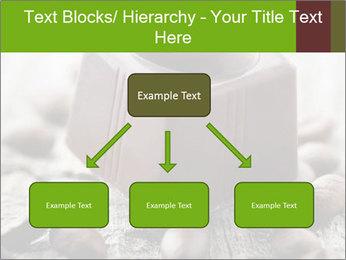 0000063042 PowerPoint Templates - Slide 69