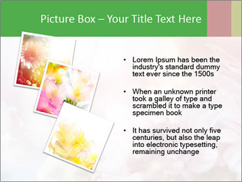0000063057 PowerPoint Template - Slide 17