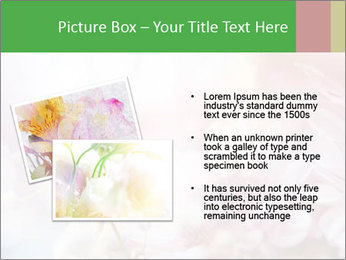 0000063057 PowerPoint Template - Slide 20
