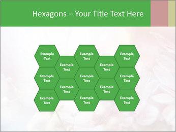 0000063057 PowerPoint Template - Slide 44