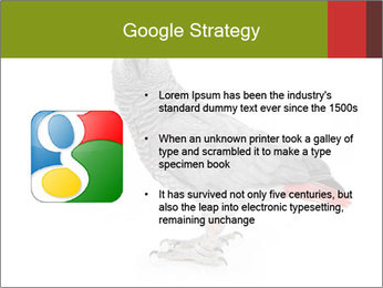 0000063059 PowerPoint Template - Slide 10