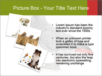 0000063059 PowerPoint Template - Slide 17