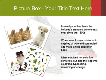0000063059 PowerPoint Template - Slide 23