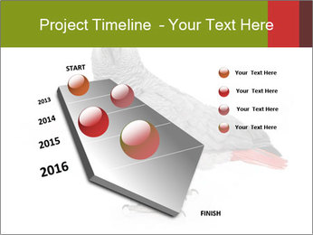 0000063059 PowerPoint Template - Slide 26