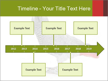 0000063059 PowerPoint Template - Slide 28