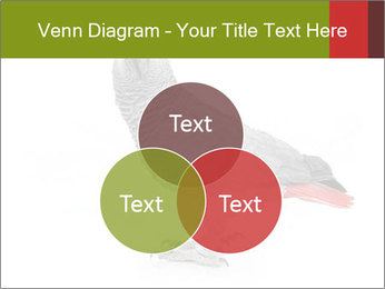 0000063059 PowerPoint Template - Slide 33