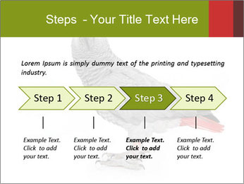 0000063059 PowerPoint Template - Slide 4