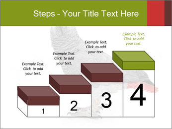 0000063059 PowerPoint Template - Slide 64