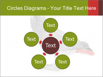 0000063059 PowerPoint Template - Slide 78
