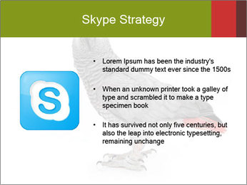 0000063059 PowerPoint Template - Slide 8