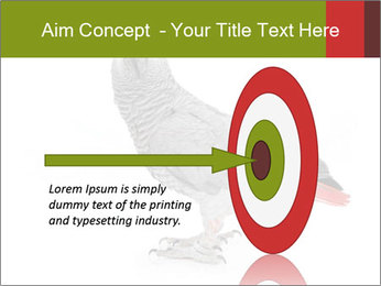0000063059 PowerPoint Template - Slide 83