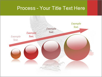 0000063059 PowerPoint Template - Slide 87