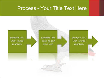 0000063059 PowerPoint Template - Slide 88