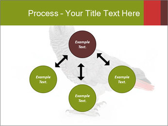 0000063059 PowerPoint Template - Slide 91