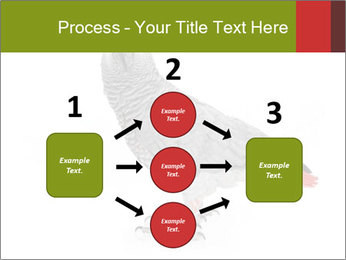 0000063059 PowerPoint Template - Slide 92