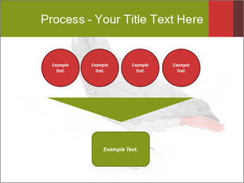 0000063059 PowerPoint Template - Slide 93