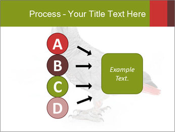 0000063059 PowerPoint Template - Slide 94