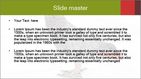0000063059 PowerPoint Template - Slide 2