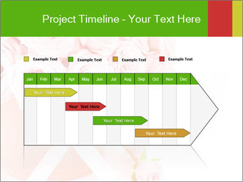 0000063074 PowerPoint Template - Slide 25